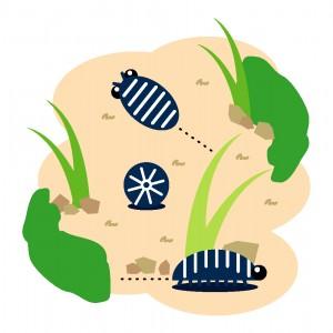 ダンゴムシの駆除方法 !【5種類の定番の殺虫剤を紹介。】