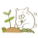 子供に安全な除草剤とその注意点!手作りの除草剤3つを紹介。