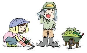 除草剤のおすすめベスト3は?種類豊富な除草剤の選び方。