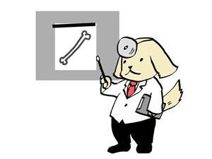 犬ジステンパーの犬以外の動物感染例!パンダだけでは無い!