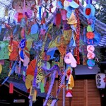 七夕の笹の由来を子供にも分かりやすく解説しましょう!なぜ竹に飾るの?