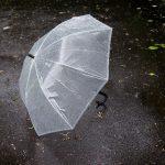 傘の捨て方は地域で違う?【ビニール傘、折りたたみ傘は何ゴミ?】